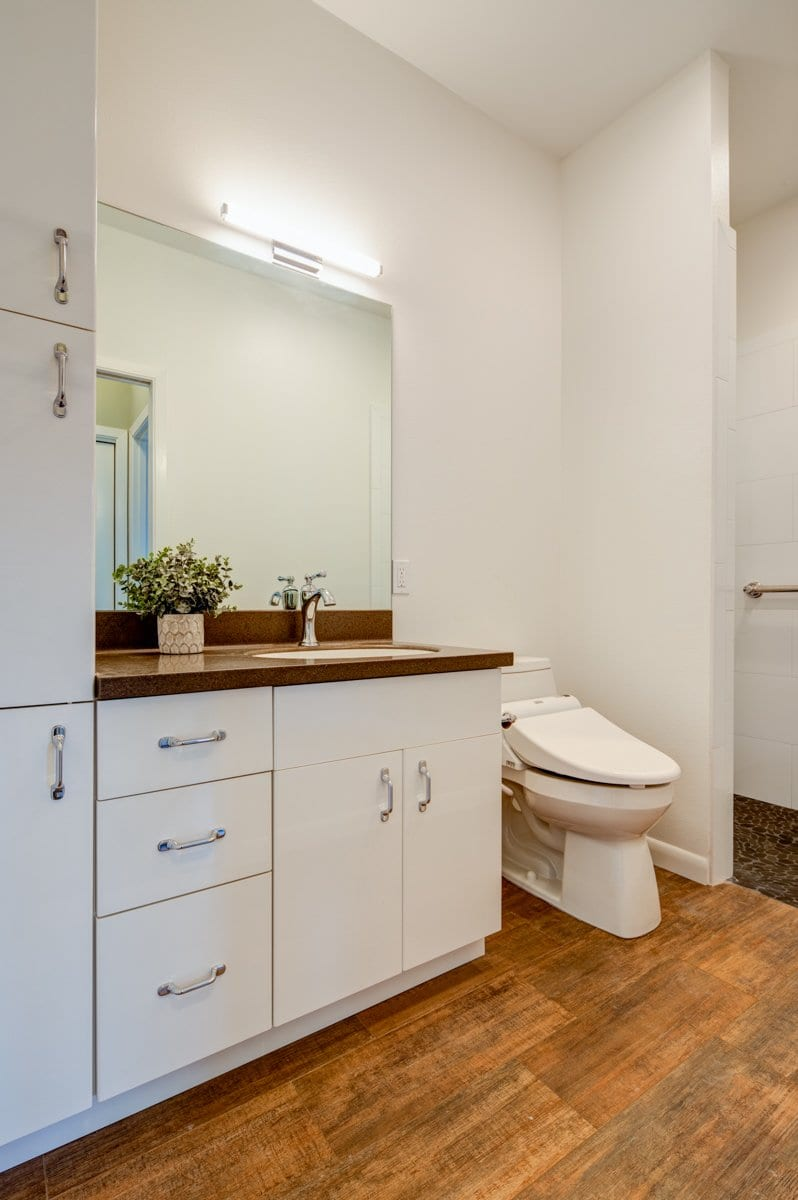 Next Generation's New Home - Mother-in-Law Suite Bathroom